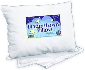 Dreamtown Kids DTKWPC